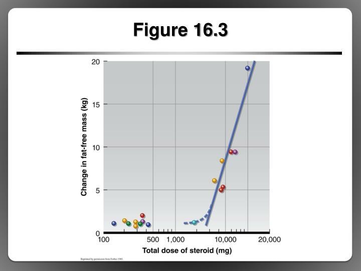 Figure 16.3