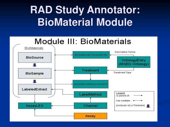 RAD Study Annotator: