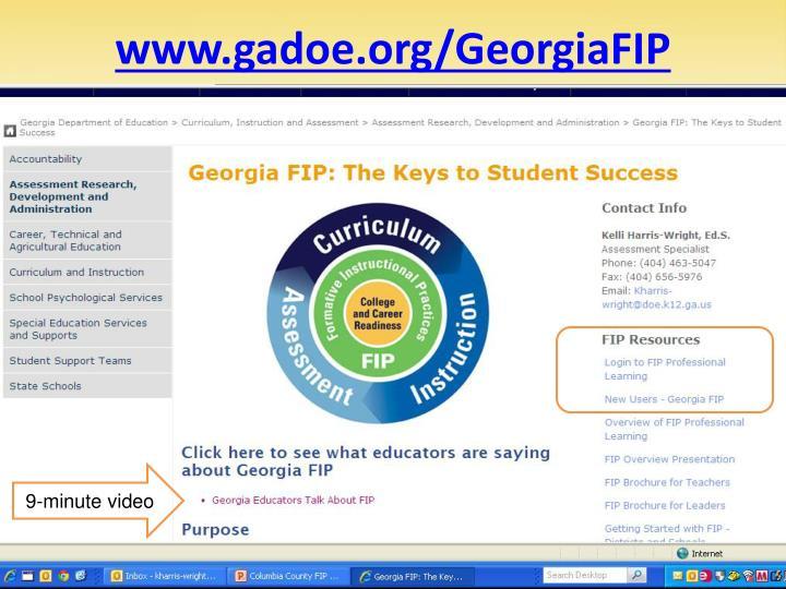 www.gadoe.org/GeorgiaFIP