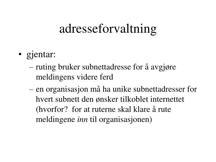 adresseforvaltning