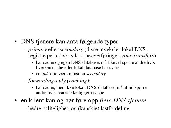 DNS tjenere kan anta følgende typer