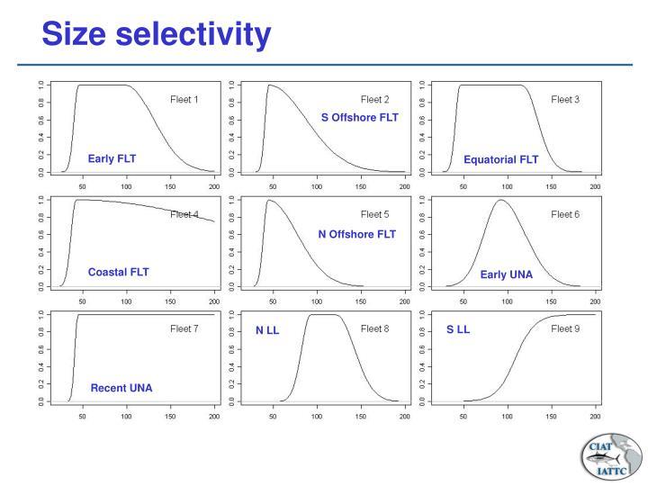 Size selectivity