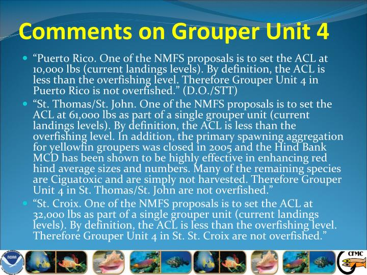Comments on Grouper Unit 4
