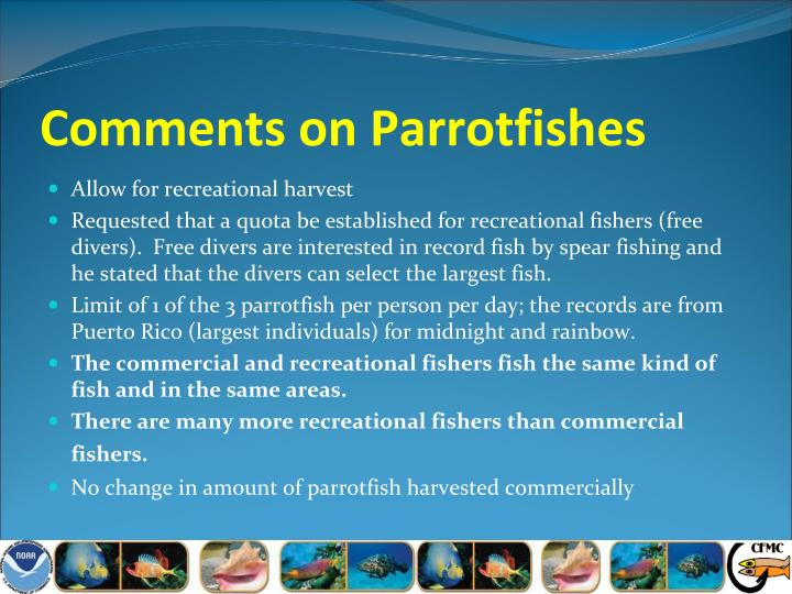 Comments on Parrotfishes