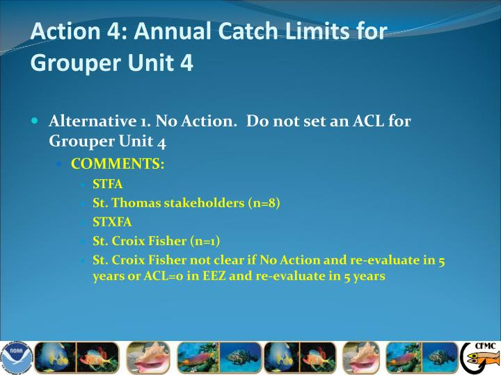 Action 4: Annual Catch Limits for Grouper Unit 4