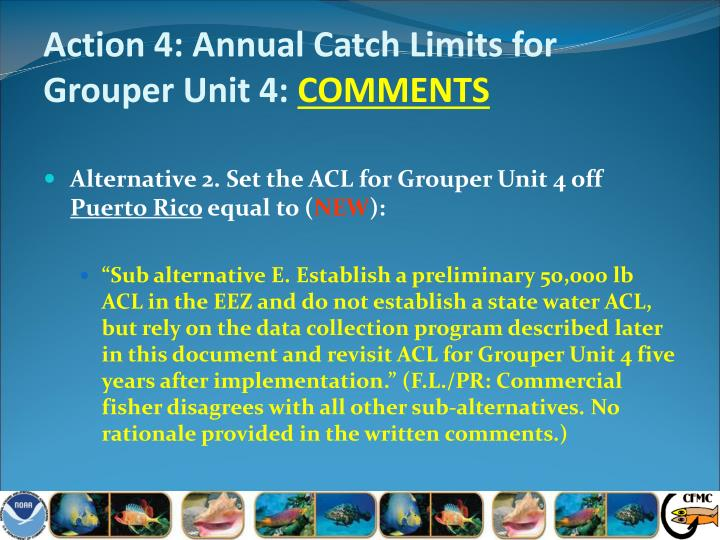 Action 4: Annual Catch Limits for Grouper Unit 4: