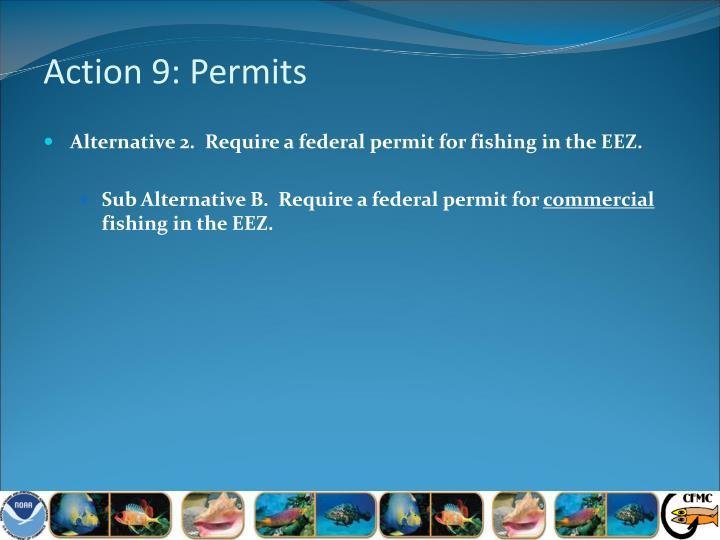 Action 9: Permits