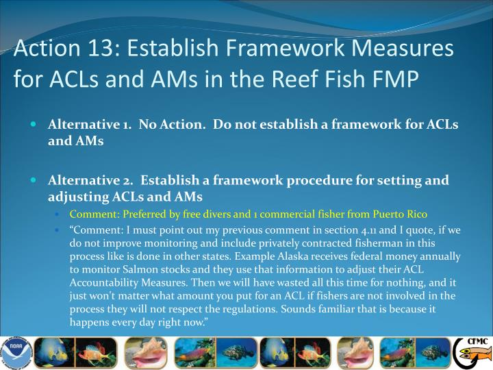 Action 13: Establish Framework Measures for ACLs and AMs in the Reef Fish FMP