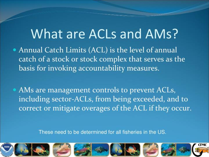 What are ACLs and AMs?