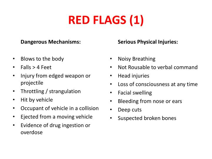 RED FLAGS (1)