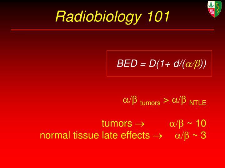 Radiobiology 101