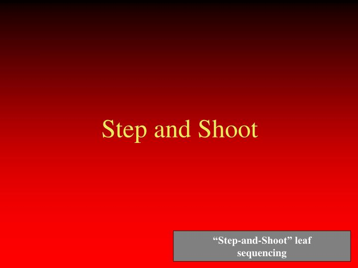 Step and Shoot