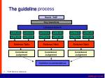 the guideline process