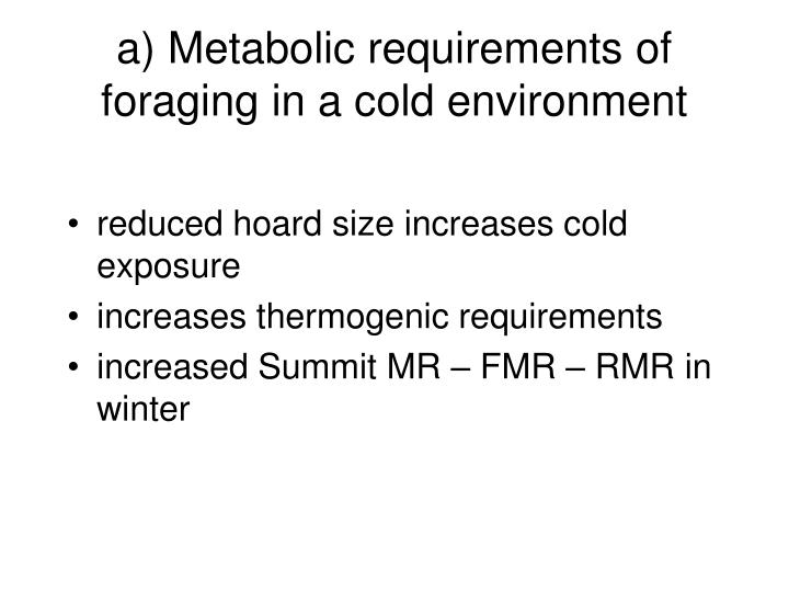 a) Metabolic requirements of foraging in a cold environment