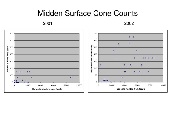 Midden Surface Cone Counts