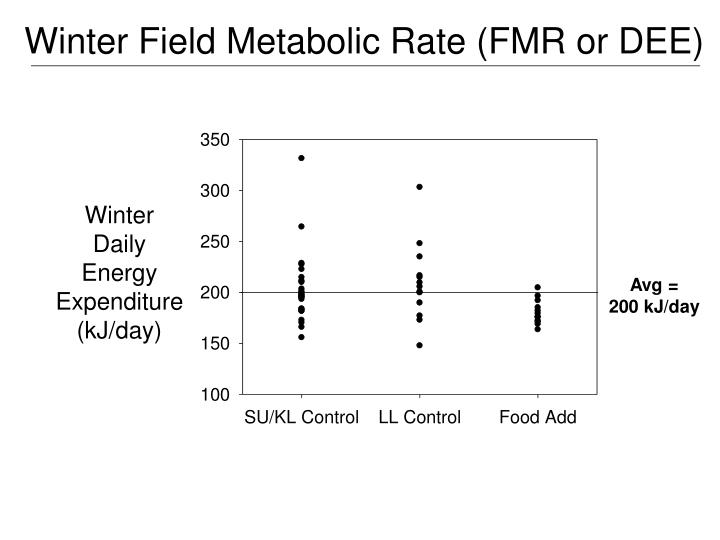 Winter Field Metabolic Rate (FMR or DEE)