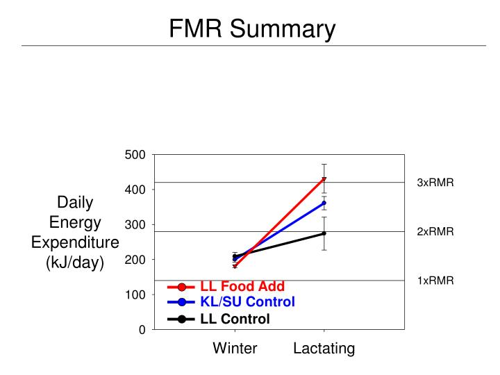 FMR Summary
