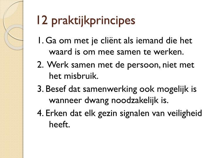 12 praktijkprincipes
