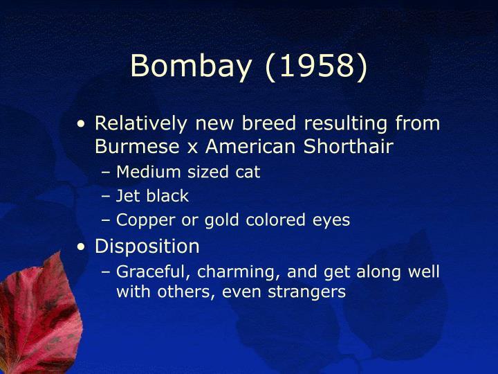 Bombay (1958)