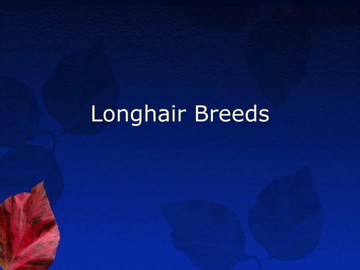 Longhair Breeds