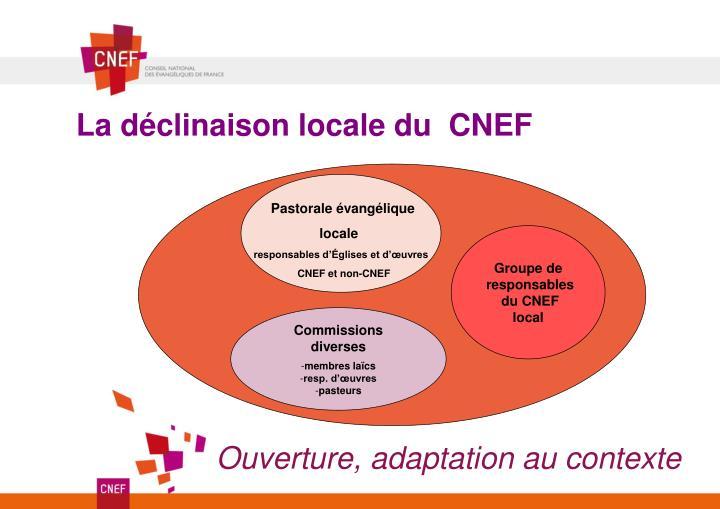 La déclinaison locale du  CNEF