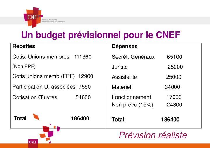 Un budget prévisionnel pour le CNEF