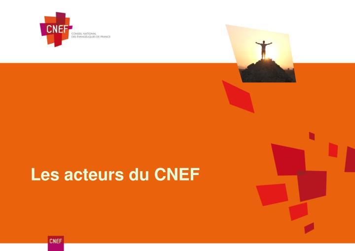 Les acteurs du CNEF