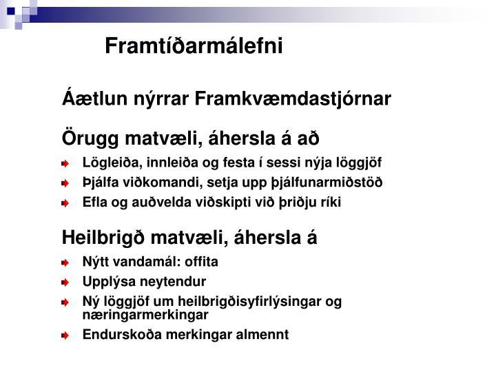 Framtíðarmálefni