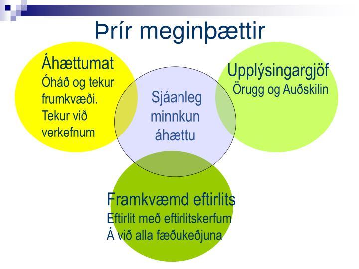 Þrír meginþættir