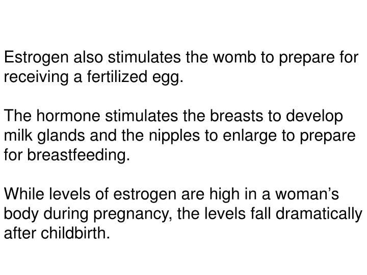 Estrogen also stimulates the womb to prepare for receiving a fertilized egg.
