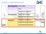 auditory representations