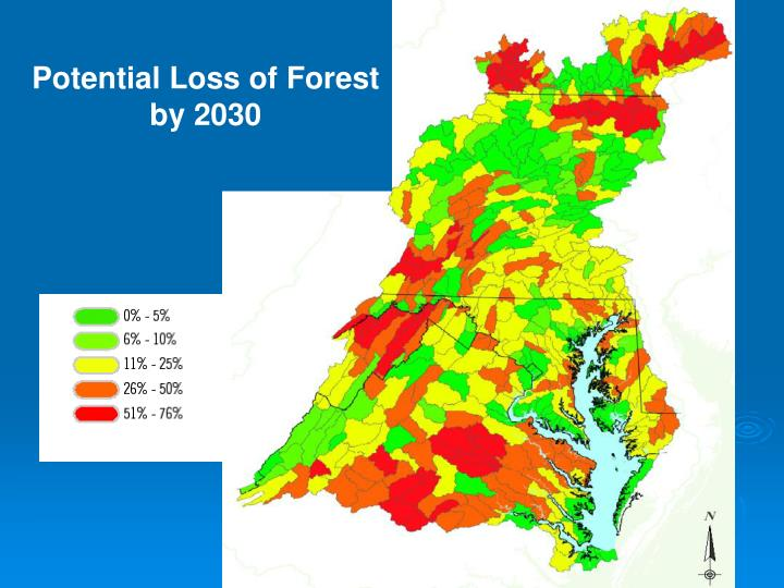 Potential Loss of Forest by 2030