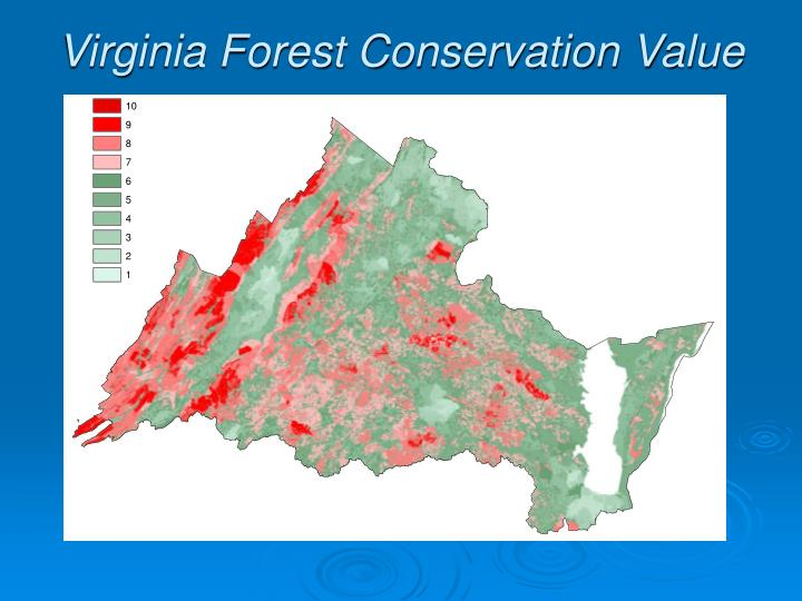 Virginia Forest Conservation Value