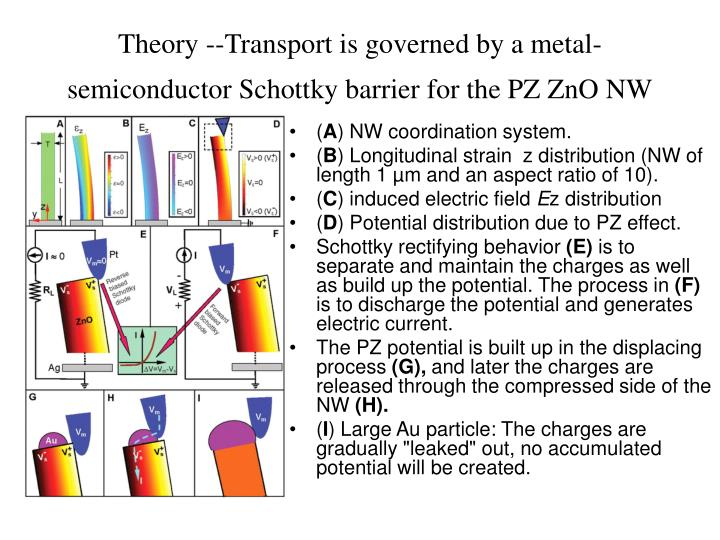 Theory --Transport is governed by a metal-semiconductor Schottky barrier for the PZ ZnO NW