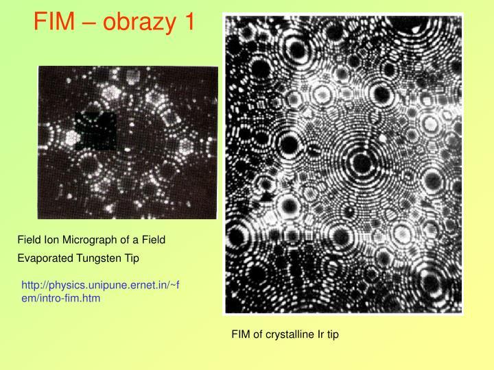 FIM – obrazy 1