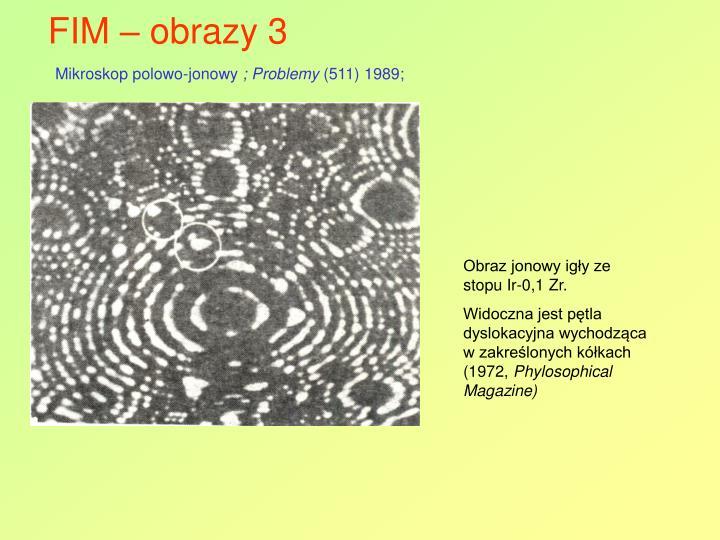 FIM – obrazy 3