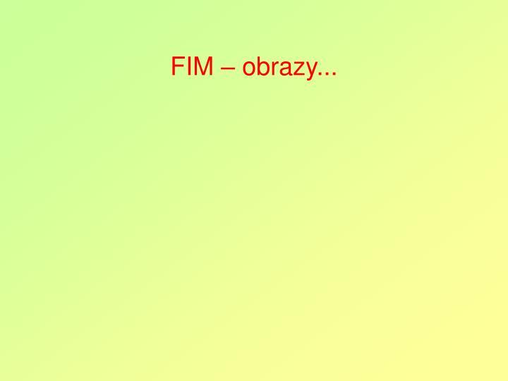 FIM – obrazy...