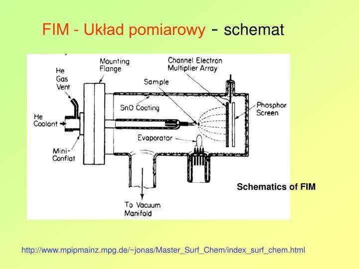FIM - Układ pomiarowy