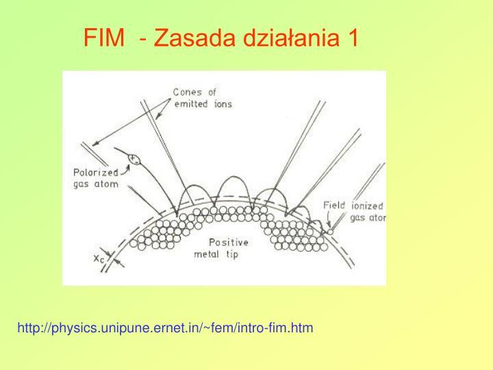 FIM  - Zasada działania 1