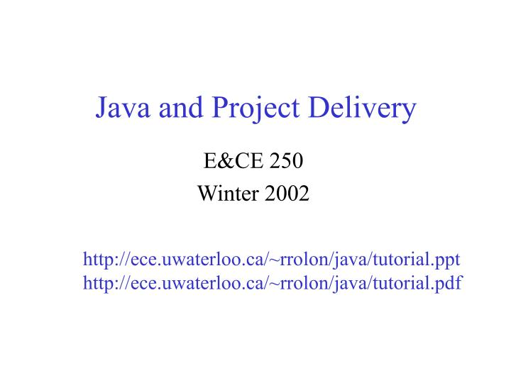 Java and project delivery