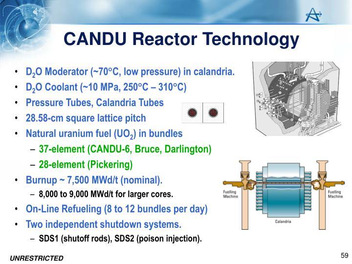 CANDU Reactor Technology
