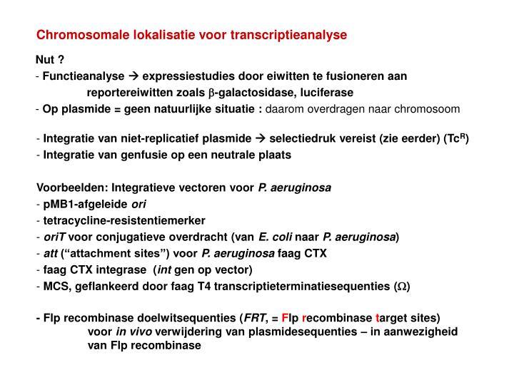 Chromosomale lokalisatie voor transcriptieanalyse