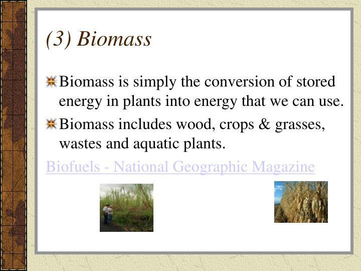 (3) Biomass