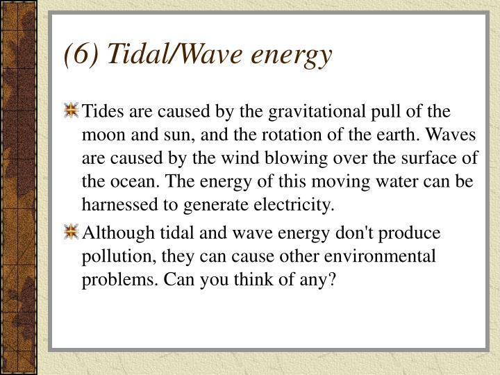 (6) Tidal/Wave energy