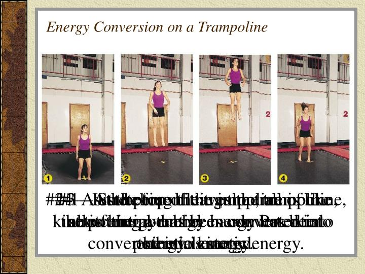 Energy Conversion on a Trampoline