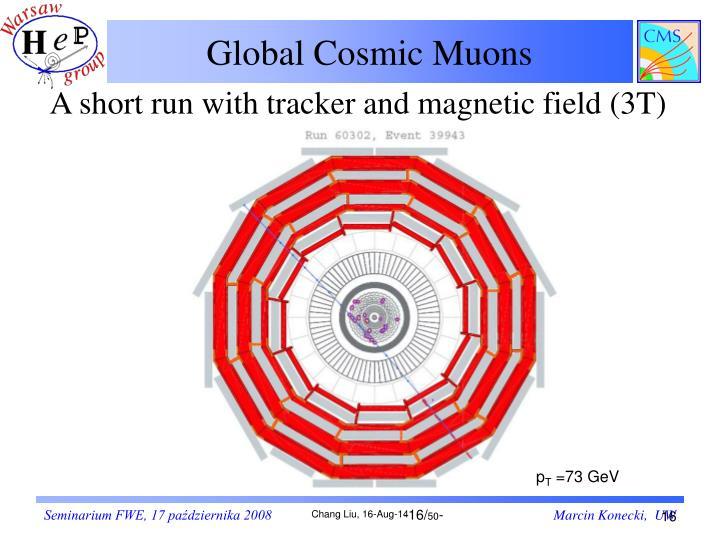 Global Cosmic Muons