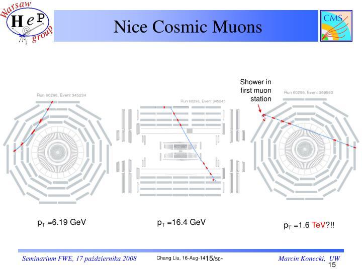 Nice Cosmic Muons