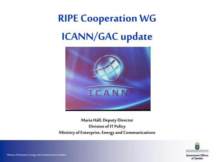 RIPE Cooperation WG