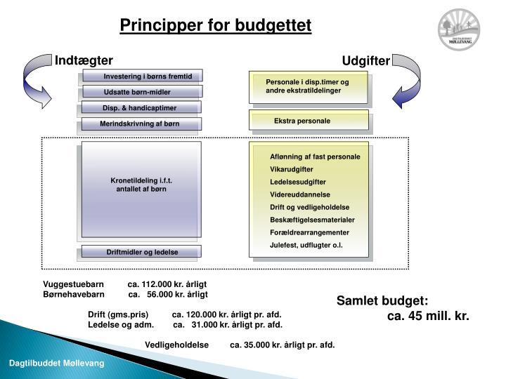 Principper for budgettet