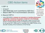 cbd action items
